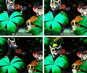 funny and madagascar image