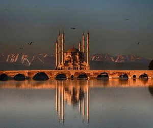 mosque and turkey image