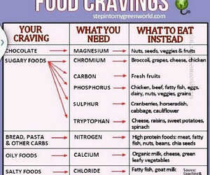 food, craving, and fitness image