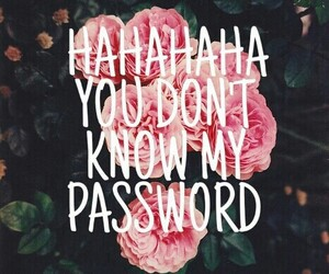 password and haha image