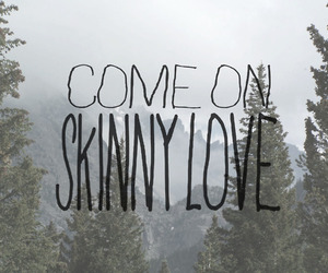 skinny love, love, and quotes image