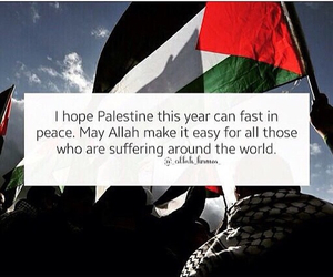 freedom, palestine, and peace image