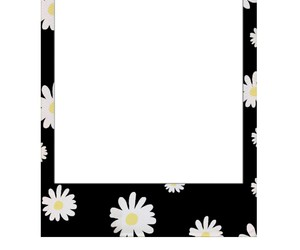flowers, frame, and black image