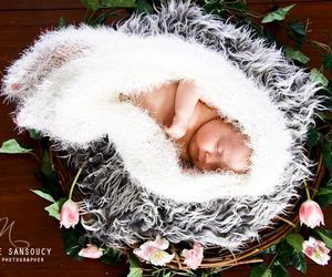 adorable, nest, and angel image