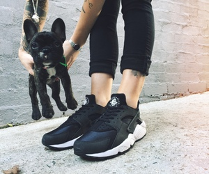dog, black, and shoes image