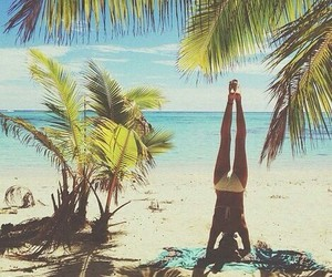 beach, palm trees, and workout image