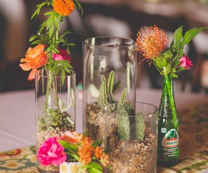 cactus, party, and table setting image