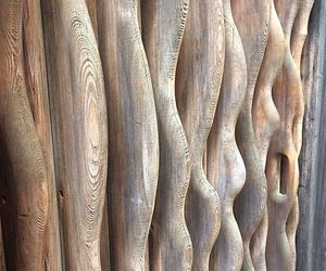 drift wood image