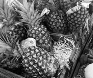 ananas, black and white, and fitness image