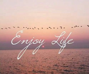 life, enjoy, and birds image