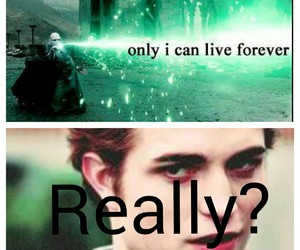 edward cullen, forever, and funny image