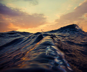 cool, wave, and water image