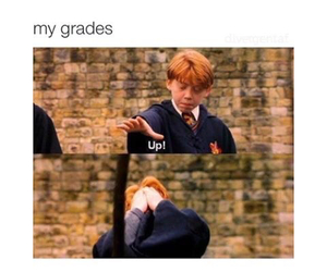 funny, harry potter, and grades image