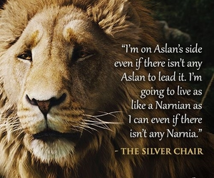 aslan, narnia, and the chronicles of narnia image