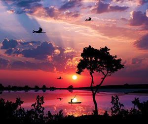 beautiful, sunset, and nature image