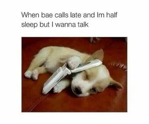 bae, call, and dog image