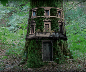 tree, house, and forest image