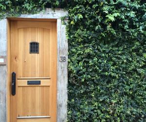 door, green, and leaves image