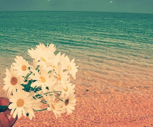 blue, sea, and flower image