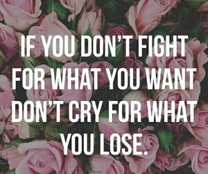 quote and fight image