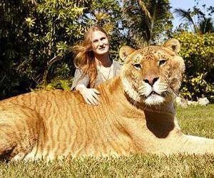 animals, gigante, and beautiful image