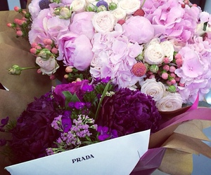 flowers, Prada, and rose image