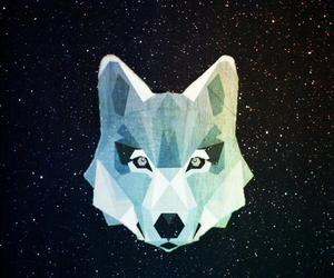 wolf, wallpaper, and galaxy image