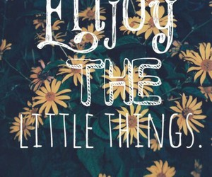 enjoy, quotes, and little things image