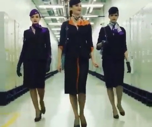 fly, travel, and cabin crew image