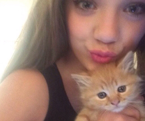 cat, kittens, and selfie image