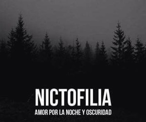night, nictofilia, and Darkness image