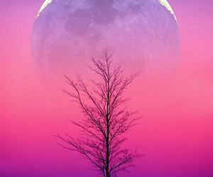 beautiful, sundown, and wanderlust image