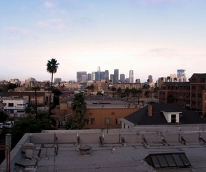 city of angels, los angeles, and la image