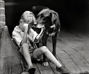 dog and boy image