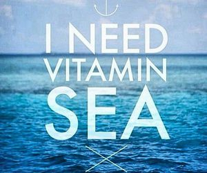 sea, summer, and vitamin image