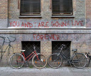 live forever and oasis image