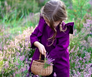 flowers, cute, and purple image