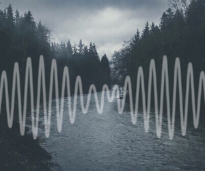 arctic monkeys, band, and trees image