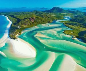 australia, beach, and nature image