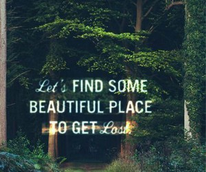 beautiful, escape, and forest image
