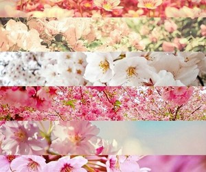 beautiful, girl, and pink image