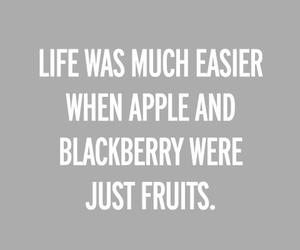 apple, blackberry, and funny image