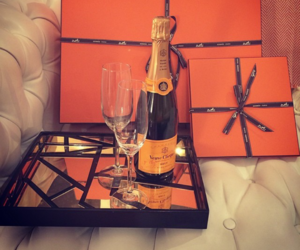 champagne and hermes image