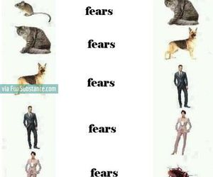 funny, fear, and lol image