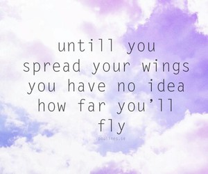 quote, fly, and wings image