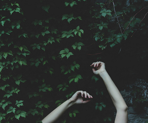 hands, green, and grunge image