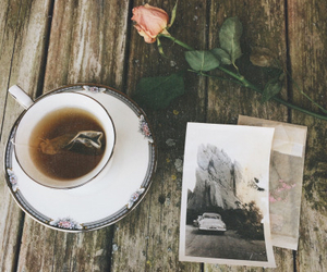 photography, rose, and tea image