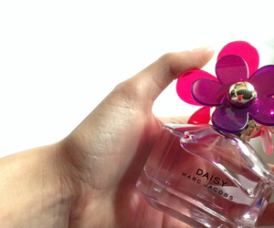 daisy, marcjacobs, and parfum image