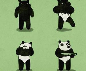 panda, funny, and bear image