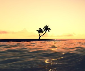 sea, sunset, and palms image